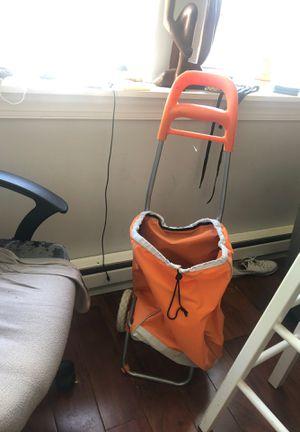 Trolling shopping cart for Sale in Philadelphia, PA