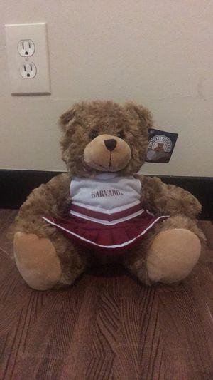 "Harvard stuffed animal- bear cheerleader 12"" for Sale in Cambridge, MA"