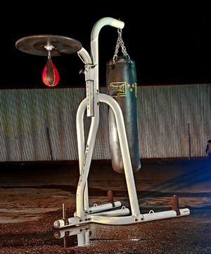 Century Fitness Heavy Bag / Speed Bag Stand Like New for Sale in San Jose, CA