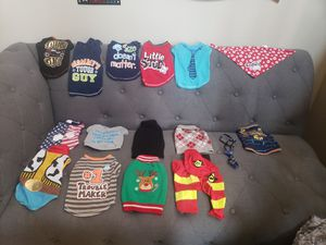 14 Size Small Male Dog Shirt Lot for Sale in Menifee, CA
