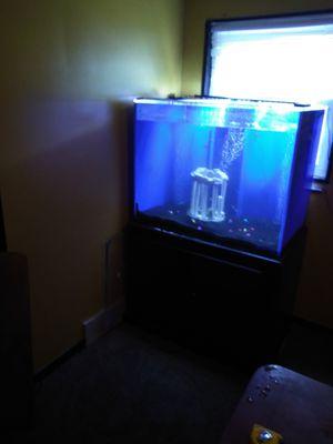 Fish tank for Sale in Warren, MI