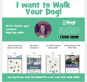 DOG WALKER - FREE TRIAL for Sale in Lancaster, NY