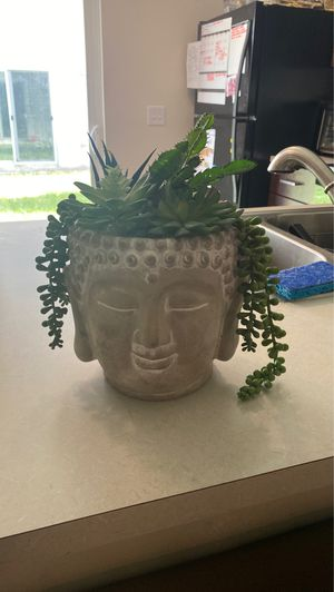 Artificial Buddha plant for Sale in Homestead, FL
