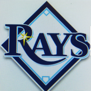 Rays tickets (6) Sun July 21st vs White Sox PLUS FREE admission to HOWARD JONES with MEN without HATS concert at FERGS for Sale in St. Petersburg, FL