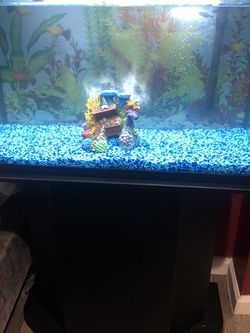 30 Gallon Fish Tank With Supplies for Sale in Everett,  WA