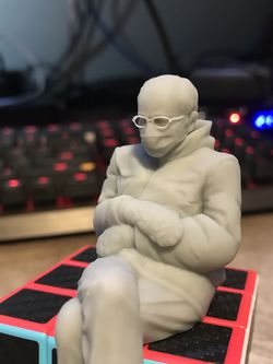 Bernie Sanders 3D Printed Sculpture for Sale in Forest Grove,  OR