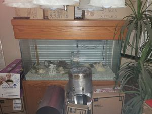 90 gallon fish tank with Oak base- asking $500- willing to negotiate. for Sale in Avondale, AZ