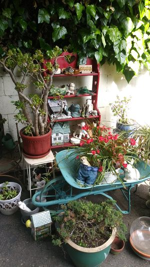 Plants pots stands Ask for prices for Sale in Los Angeles, CA