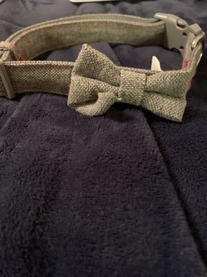 Dog bow-tie for Sale in Tulsa, OK