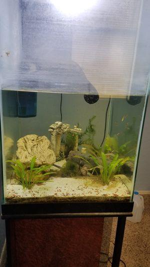 45 Gallon Column Aquarium/Terrarium w Stand for Sale in Chandler, AZ