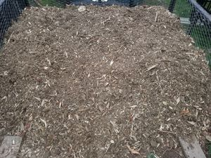 Free stump mulch for Sale in PA, US