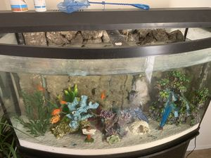 46 Gallon Bow front aquarium with stand and light including 305 fluval filter for Sale in Westerville, OH