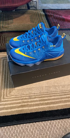 Brand new men's Nike lebrons XII size 10.5.Price is firm for Sale in The Bronx, NY
