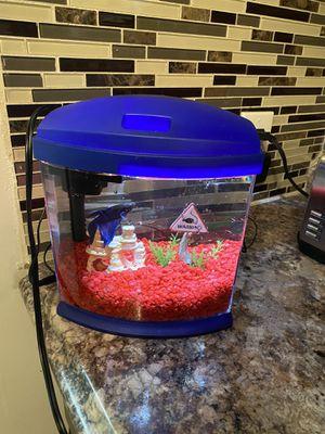 Fish aquarium & extra filters for Sale in St. Louis, MO