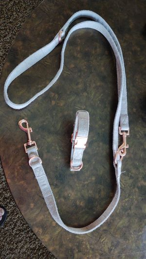Dog collar and leash for Sale in Redlands, CA