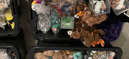 Beanie Babies. Lots Of Them. for Sale in Kirkland,  WA