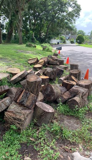 Free Wood - See details for what's left for Sale in Orlando, FL