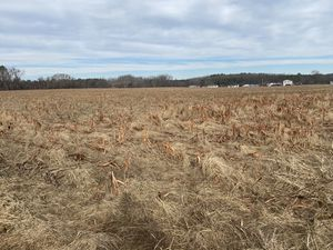 50+ Acres available for tilling for Sale in Lincoln, DE