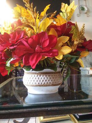 Plants for Sale in Saint Petersburg, FL