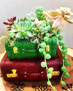 Succulents in a Rustic Suitcase Planter for Sale in Irvine, CA