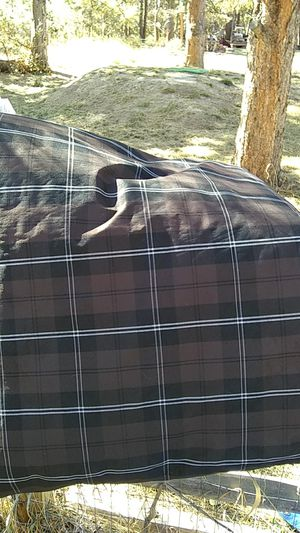 K & H dog bed waterproof free for Sale in Monument, CO