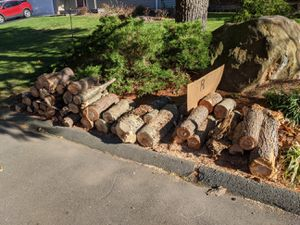 Free wood for firewood. for Sale in Cheshire, CT