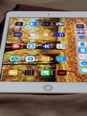 iPad mini (5th generation) for Sale in Chico, CA