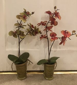 Two orchid silk plants for Sale in Los Angeles, CA