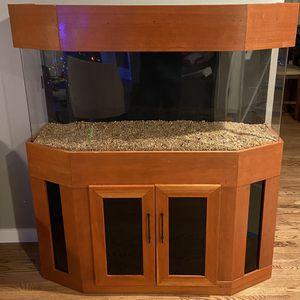 Acrylic Fish Tank (67 Gallon) & Custom Fish Tank Stand for Sale in Lynnwood, WA