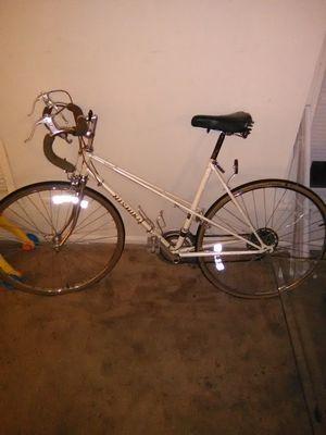 1977 nishiki marina bike for Sale in US