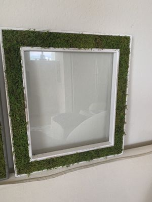 Original Art/Moss-filled Picture Frames (2) w Glass for Sale in Miami, FL