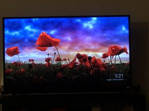 Vizio 55 e-series 4K ultra Hd for Sale in TEMPLE TERR, FL