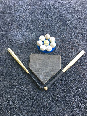 2 bats and 8 balls and home plate (official size) for Sale in Sunbury, PA