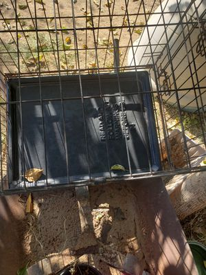 Dog Cage for Sale in Menifee, CA