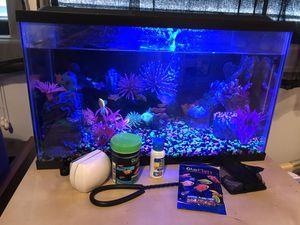 Glo-Fish Tank 10 Gallon for Sale in Houston, TX