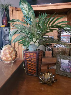 Fake plant for Sale in Beaverton, OR