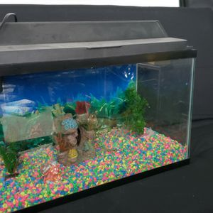 Fish Tank With Complete Accessories for Sale in Woodbridge, VA