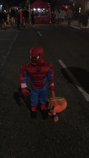 Spider man for Sale in Grover Beach, CA