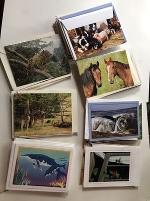 Everyday Notecards & Christmas cards for Sale in Tampa, FL