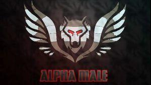 Alpha Male personal coaching for Sale in Morton, IL