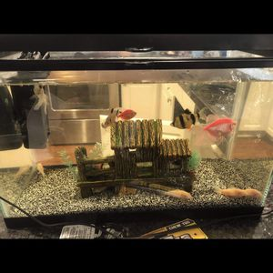 Fish Tank for Sale in Renton, WA
