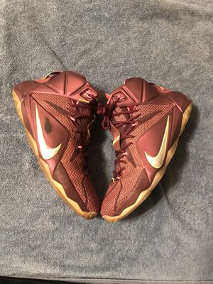 LeBron 12 Double Helix for Sale in Cambridge, MA