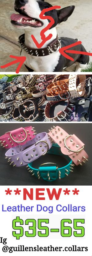 Collars for Sale in Ontario, CA