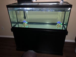 "75"" fish tank for Sale in Austin, TX"