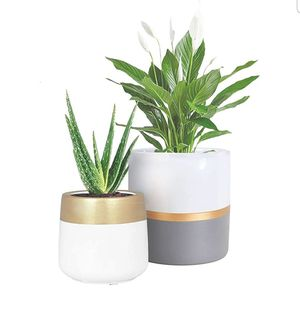 Planter Pots Indoor with Drainage Hole for Sale in Rialto, CA