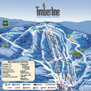 Timberline WV adult all day ski lift ticket for Sale in Washington, DC