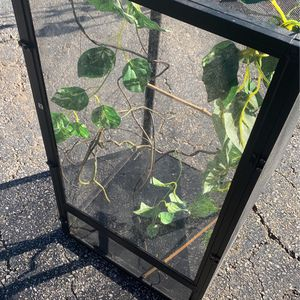 Small-medium Lizard Cage for Sale in Silver Spring, MD