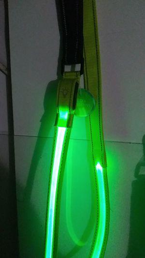 Dog leash LED for Sale in Largo, FL