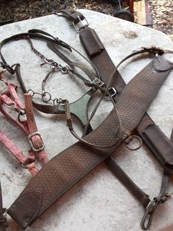 Misc. Horse Tack for Sale in De Leon Springs,  FL