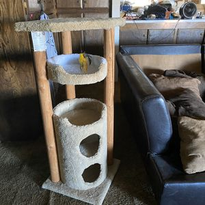 Cat Tree for Sale in Fairfield, CA